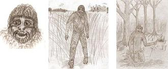 It's Bigfoot mating season in the Florida Everglades and researcher Dave Shealy says this furry creature is attracted to women on their periods.