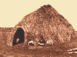 The Apache dwellings consisted