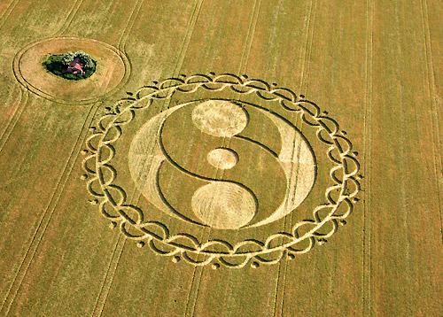 http://www.greatdreams.com/crop-circle-RidgewayFurze86-2008.jpg