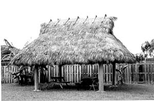 Pleasing Native American Housing Download Free Architecture Designs Embacsunscenecom
