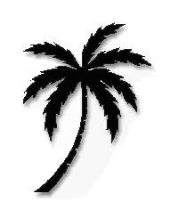 الفارغون اكثر ضجيج. Palm-tree