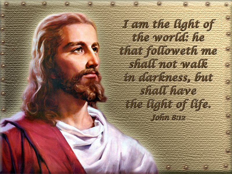 "i am the light of the Lesson 15: ""i am the light of the world""-new testament: gospel doctrine teacher's manual."